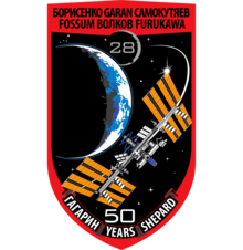 Description de l'image ISS Expedition 28 Patch.png.