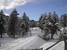 Parco Nazionale della Sila in inverno