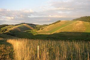 Central Uplands - Central Uplands in Baden-Württemberg: the Kaiserstuhl