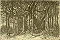 In brightest Asia (1891) (14767312662).jpg
