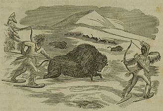 Big-game hunting - Native Americans hunting bison, from an 1855 illustration