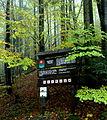 Informačná tabuľa v Badínskom pralese.JPG