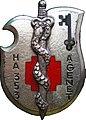 Insigne 353e hôpital des armées André Genet à Treve.jpg