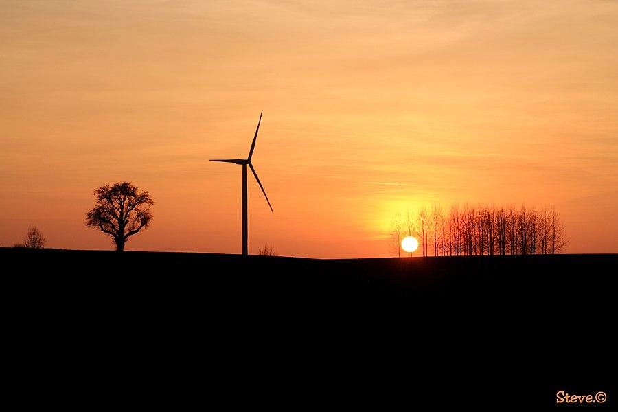 """""""Mieux vaut ne pas louer le jour avant le coucher du soleil."""" Proverbe norvégien"""