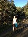 Into the Sun (9627452408).jpg