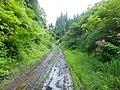 Inubushi, Tokamachi, Niigata Prefecture 942-1504, Japan - panoramio.jpg