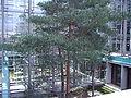 JKH-Wintergarten.jpg