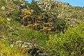 Jaboticatubas - State of Minas Gerais, Brazil - panoramio (87).jpg