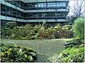 January Frost Botanic Garden Freiburg Panorama alpinum - Master Botany Photography 2014 - panoramio.jpg