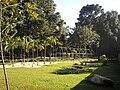 JardimSensacoesJBCuritiba1.JPG