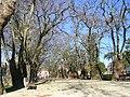 Jardim da Cordoaria (313416615).jpg