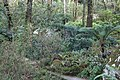 Jardin Feteira Rainha Sintra 2.jpg
