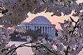 Jefferson Monument.jpg