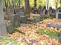 Jewish cemetery in Kraków (Kazimierz)9.jpg