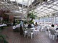 Jindai Botanical Garden-4.jpg