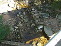 Jizera pod kořenovem - panoramio.jpg