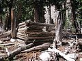 Johnson Lake Mine Cabin 4 NV NPS.jpg