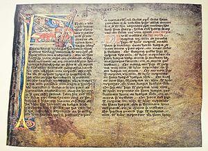 Law of Iceland - Jónsbók, MS AM 351 Fol., Skálholtsbók eldri.