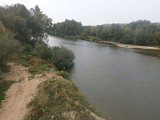 Južna Morava, Jelašnica, Leskovac, b18