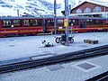 Jungfrau, Swiss Alps, Dog Station.jpg
