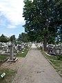 Kápolna Street Cemetery, main walkway, 2017 Pomáz.jpg