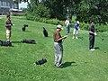 KSHO 20100810 12-51-31 (4896415964).jpg