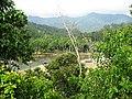 Kaki Leuser - panoramio.jpg