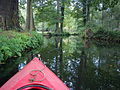 Kayaking in Spreewald 2012 (10).jpg