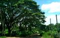 Kekirawa view34.png