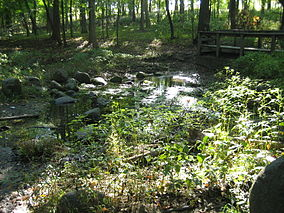 Kendall County Il Silver Springs State Fish and Wildlife Area9.JPG