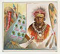 Keokuk, Sac & Fox, from the American Indian Chiefs series (N36) for Allen & Ginter Cigarettes MET DP838911.jpg