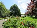 Keukenhof Garden (56).JPG