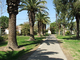Intentional community - Kfar Masaryk is a Kibbutz in northern Israel.