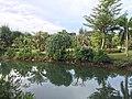 Khok Kloi, Takua Thung District, Phang-nga 82140, Thailand - panoramio (7).jpg