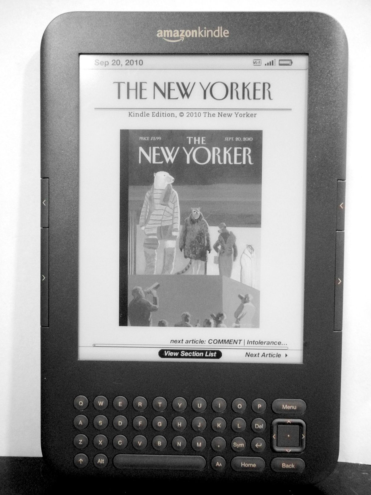 Kindle store wikipedia ccuart Images