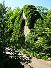 Kloster Lindow Süd.JPG