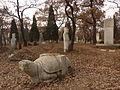 Kong Hongxu - bixi and tombstone - P1060163.JPG