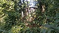 Konkan - Kondhe Village, Chiplun - Part 5 20151223 (23918557151).jpg