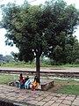 Konkan - Western Ghats - Scenes from India's Konkan Railway 01.JPG