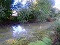 Konotop Zelenchak swamp - 02.jpg
