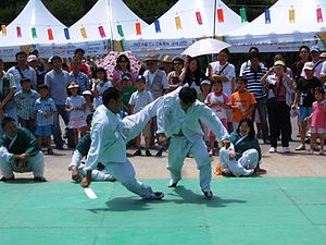 Taekkyeon - Martial artists presenting taekkyeon for Hi! Seoul Festival on April 28, 2007
