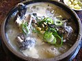 Korean soup-Samgyetang-01.jpg