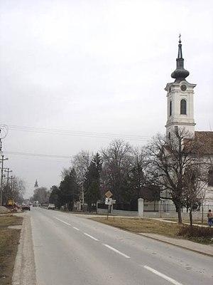 Kovilj - Orthodox churches in Kovilj