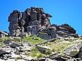 Kráľova hoľa - staviteľka Príroda... - panoramio.jpg