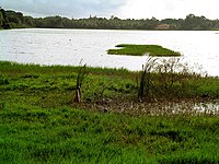 Kukkarahalli lake, Mysore