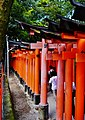 Kyoto Schrein Fushimi-Inari-taisha Torii 31.jpg