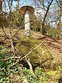 Lüftungsrohr im Hüttenwald.jpg