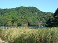 Lake Kameyama-ko - panoramio (1).jpg