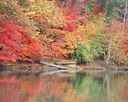 Lake Wylie in autumn.jpg