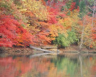 South Carolina - Lake Wylie in autumn